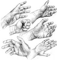 Hand studies by powerswithin