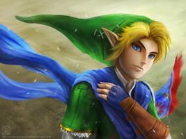 Link - Hyrule Warriors 2 by EternaLegend