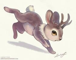 Lil Jackalope by LCibos