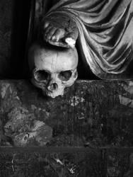 Skull I by SilvieTepes