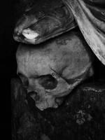 Skull II by SilvieTepes
