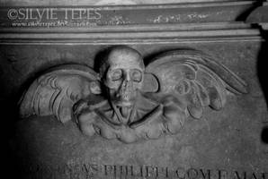 Winged skull by SilvieTepes