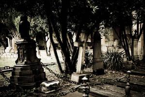 Bologna 2014 - Certosa XXXIV by SilvieTepes