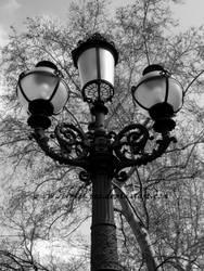 Trees behind street lamp by SilvieTepes