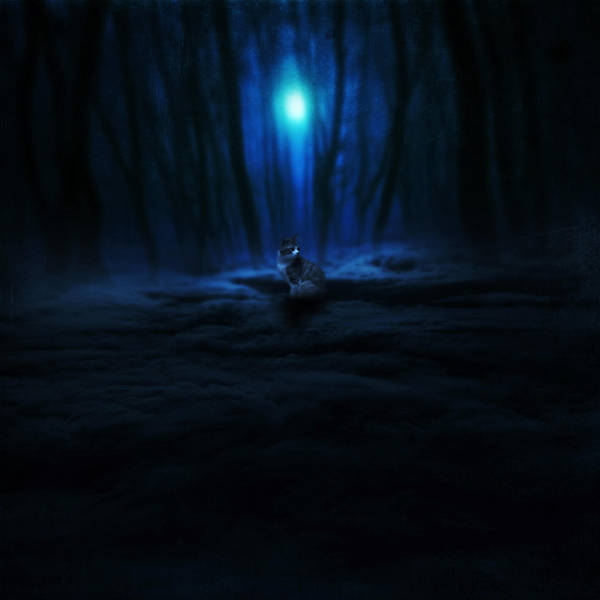 night watcher by utopic-man