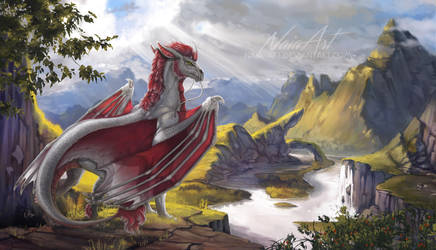 -= Com: Valley of Droggo =- by Naia-Art