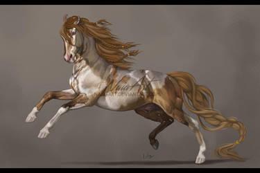 -= Com: Sinbad =- by Naia-Art