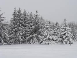 Snowproblem by punkyitz