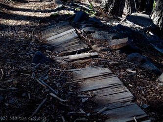 Flume remains by MartinGollery
