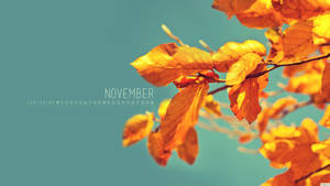 November 2012 by kriegs