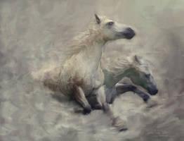 Cavallo Della Morte by L-E-N-T-E-S-C-U-R-A