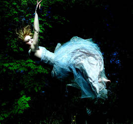 descent by thea-bee-photography