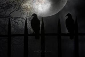Birds In The Dark by IrondoomDesign
