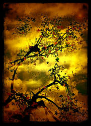 The Mist Tree by IrondoomDesign