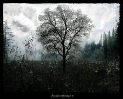 Whispers Of Memories Pt 2 by IrondoomDesign