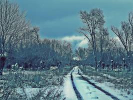 blue winter.. by kriakao