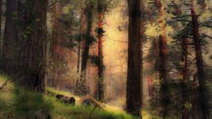 el bosque encantado.. by kriakao