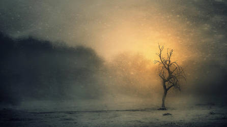 al amanecer.. by kriakao