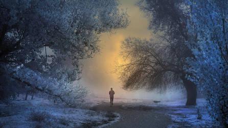 frosty morning by kriakao