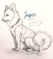 Jasper sketch by RUKlE
