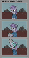Rock Bucket challenge by JayZonSketch