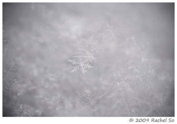 Snowflake I by butterfly36rs
