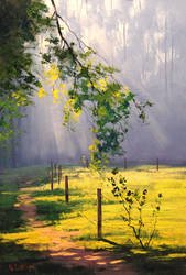 Sunrays by G.Gercken by artsaus