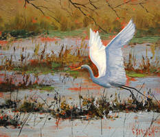 Heron in flight by artsaus