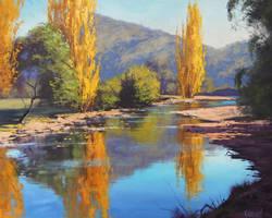 Autumn Reflections Tumut by artsaus