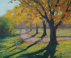 Autumn Shadows by artsaus