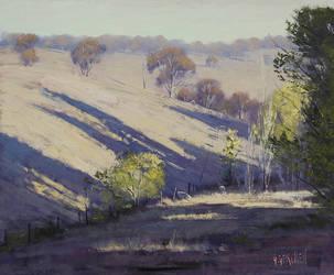 Summer Shadows Bathurst by artsaus