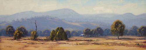 Tumut Landscape by artsaus