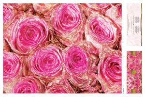 SUGAR COATED ROSES by markpiet
