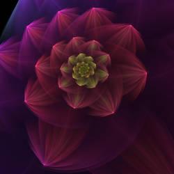 Flower Dream by anjaleck