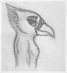 One Feathery Boi by victorbessa96