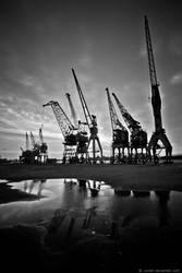 Cranes Of Antwerp 8 by Evilien