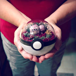 Poke Ball Terrarium - Weezing - Medium by TheVintageRealm