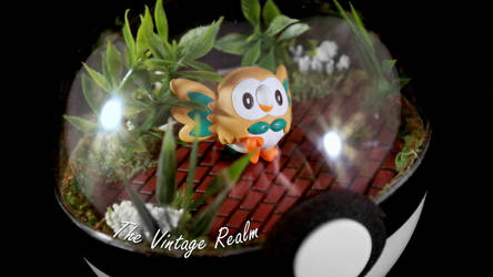 Poke Ball Terrarium - Rowlet by TheVintageRealm
