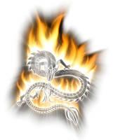 Fire Dragon by XResch