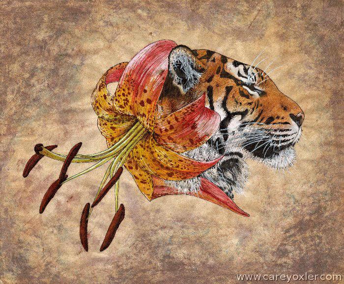 Tiger Lily by Kittenpants
