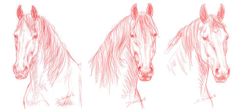 3 friesians sketch by jiphorse