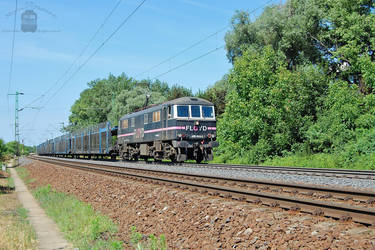 450 003 with freight near Gyor by MorpheusPhotoworks