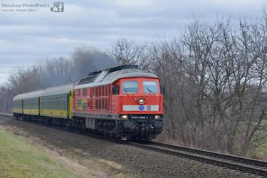 651 008 with a passenger train near Gyor - 2016 by MorpheusPhotoworks