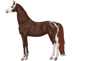 Pixel Horse by AgnethaArt
