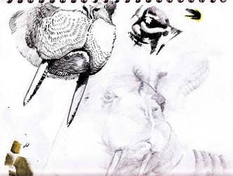 wassel sketch by aaronAdrian