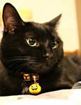 Spooky by BI0TERR0R