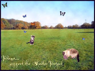The Shelter Project by NanaOsaki88