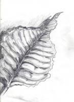 life drawingII by MikeDastardly