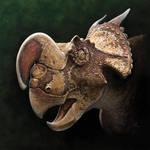 Einiosaurus procurvicornis by Olorotitan