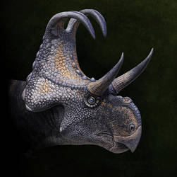 Machairoceratops by Olorotitan